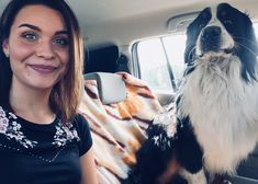 Bernese mounitain dog Dogs, Doggies, Pet Dogs, Dog