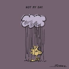 Not my day woodstock and snoopy from peanuts - radiserne dårlig dag kan hænde Peanuts Quotes, Snoopy Quotes, Peanuts Cartoon, Peanuts Snoopy, Food Cartoon, Cartoon Man, Peanuts Comics, Snoopy Love, Snoopy And Woodstock