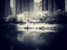 IMG_7538 by guitarlogy, via Flickr | street scene + arcitecture + monochrome + water + iphoneography