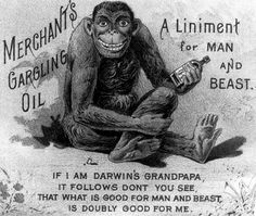 Remarks: The advertisement is American and dates from the 1890s; it gives some idea of how widespread were the ideas of evolution and that h...