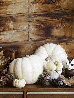 white pumpkin - pumpkin decor - fall decor - thanksgiving decor - tablescapes - centerpieces - decor - interior design and decor - owls - fa...