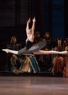 """Alyona Kovalyova as Odile in Swan Lake (Bolshoi Ballet, "" Bolshoi Ballet, Ballet Dancers, Ballet School, Russian Ballet, Ballet Photos, Swan Lake, Gymnastics, Concert, Barre"