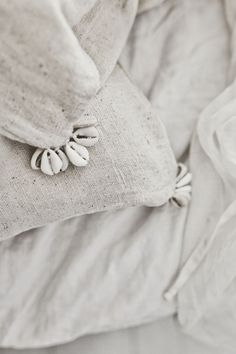 Shell Details in Neutral