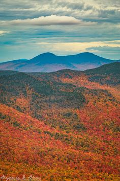 Jay Peak from the fire tower on Mount Belvidere. The fall foliage colors in Vermont right now are beautiful!