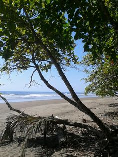 Playa Guapil, Puntarenas CR