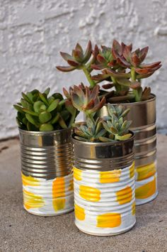 How to paint tin cans and repot succulent plants with kids!