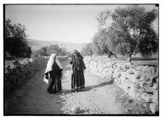 Picture a Day: Chapter: Jewish Festivals - Shavuot The Book of ...