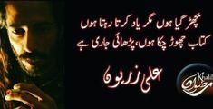 Urdu Poetry, Neon Signs, Ali, Ant