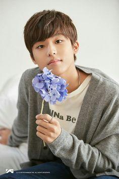 Yoshi, Yg Entertainment, Hyun Suk, Flower Boys, Treasure Boxes, Flower Images, Beautiful Boys, Photo Cards, Boy Groups