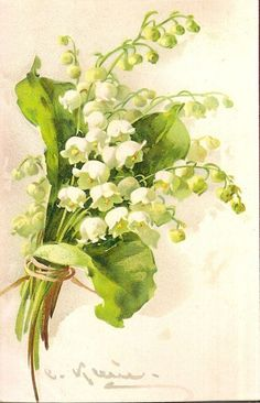 lily of the valley watercolor - Поиск в Google