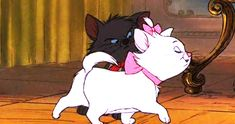 Check out all the awesome marie gifs on WiffleGif. Including all the aristocats gifs, disney gifs, and kitten gifs. Disney Pixar, Disney Animation, Walt Disney, Disney Cats, Disney And Dreamworks, Disney Cartoons, Disney Love, Disney Films, Disney Characters