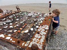 Mini Adventure: The Boston Harbor Islands - Finding Silver Pennies