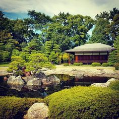 #japan #kyoto #nijocastle #castle #garden #architecture #view #travel #travels #traveladdict #travelingram #traveling #traveler #instatravel #instapic #instaphoto #instatrip #trip