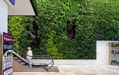 Green Fortune plantwall / vertical garden in retail / shopping mall.  Grüne Wand | Pflanzenwand | Groene wand