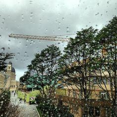 Definitely staying in today. #rainy #usfca - @valerayyye- #webstagram