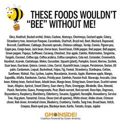 We would be without so many crops if it wasnt for the wonderful pollinator: the honeybee. Please read and share: http://en.wikipedia.org/wiki/List_of_crop_plants_pollinated_by_bees