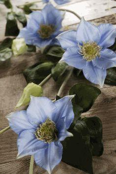 """Silk Clematis Garland 48"""" Vine Helio Blue"""