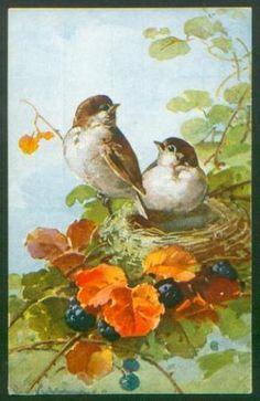 Catherine Klein Song Birds
