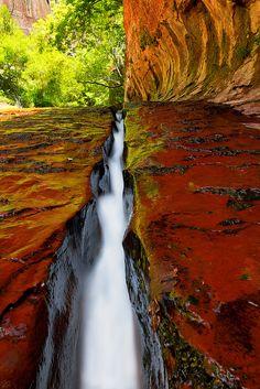 Subway Crack, Zion National Park, Utah
