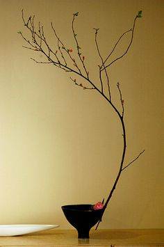 Ikebana - a disciplined art form in which the arrangement is a living thing where nature and humanity are brought together. It is steeped in the philosophy of developing a closeness with nature. Focused on harmony, color use, rhythm, and elegantly simple design. Silence is a must during practices of ikebana.