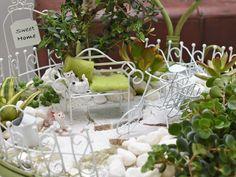 Wer hat auch Bock auf Strand, Sommer, Urlaub und Meer? #minigarten #miniaturwelt #minidekoration #elfe #mädchen #dekoartikel #erlebnisgärtnerei #hödnerhof #ebbs #mils #dez #innsbruck #tirol #größtegärtnereitriol #ausflugsziel #erleben #pflanzenwelt #dekowelt #gartenpflanzen #minipflanzen #zimmerpflanzen #saisonpflanzen #gärtnerei #eigenproduktion Innsbruck, Strand, Table Decorations, Home Decor, Mini Plants, Roses Garden, Garden Plants, House Plants, Vacation