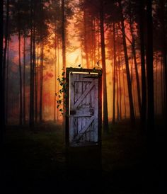 There was a door in the middle of the woods. You could walk all the way around it, and it all looked the same. But when you walked through it, you walked into another world.