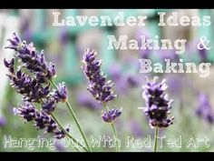 Lavender Ideas for Making and Baking.