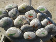 I painted these rocks to use in my veggie garden.