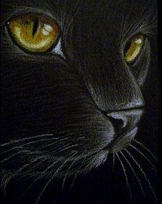 """Black Cat – Yellow Eyes"" par Cyra R. Cancel ""Black Cat – Yellow Eyes"" par Cyra R. Animal Paintings, Animal Drawings, Yellow Cat, Yellow Eyes, Black Cat Art, Black Cats, Cats And Kittens, Cats Bus, Black Paper"