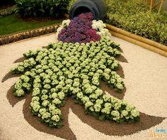 Nós já mostramos vários efeitos incríveis de jardinagem. Neste aqui o desenho de uma folha foi feito apenas com flores e pedras coloridas.