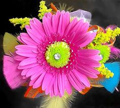 Dill's Perfectly Pink Neon Gerbera Daisy Wrist Corsage - The hot pink and green flower minus the feathers is my ideal for prom!! :D