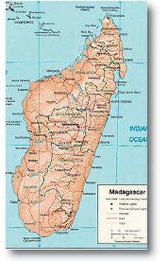 292 Best Madagascar images