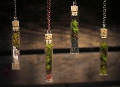 Terrarium, terrariums, DIY, How To, DIY terrarium, glass terrarium, green terrarium, fish tank, jar, jar terrarium, terrarium necklace, terrarium pendant, moss, hen and chicks, tillandsia, succulents, cacti, cactus, herbs, thyme, oregano, lavender, figurines, mosses, lichens, pixie cups, aquarium, craft