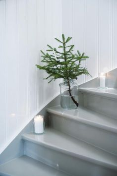 Simple Christmas decoration... Christmas tree for kitchen????