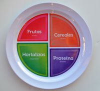 School Lesson Plan Ideas for teaching the new USDA icon, MyPlate