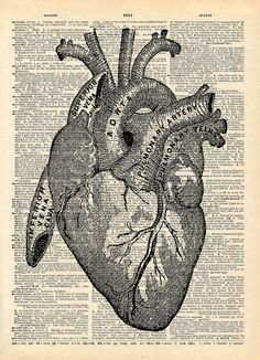 Art Print Anatomical Heart Upcycled Book Love
