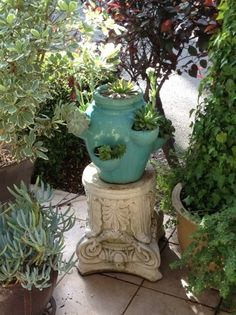 succulents in a strawberry pot Shed Landscaping, Strawberry Pots, Tuscan Garden, California Garden, Succulents In Containers, Soothing Colors, Dollar Tree Crafts, Garden Pots, Garden Ideas
