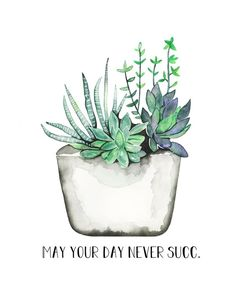 Discover recipes, home ideas, style inspiration and other ideas to try. Succulents Wallpaper, Succulents Drawing, Watercolor Succulents, Felt Succulents, Succulents Garden, Watercolor Flowers, Watercolor Art, Succulents Painting, Indoor Succulents