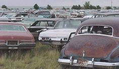 I've always wanted to find and refurbish an old car. And yes, there is something cool about junkyards.