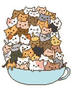 catcup.jpg