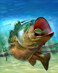 McGinty, Mike - Bass Fishing