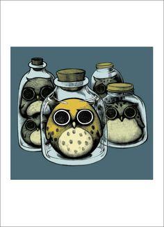 Jarred Owls by Nancy Chiu