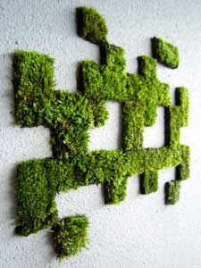 if you have a barren or  boring outside wall, you could spruce it up with a litle moss grafitti