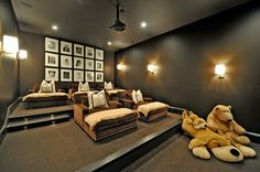 movie room?