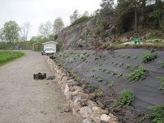 En Trädgårdsälskares betraktelser: Slänt klar! Landscaping A Slope, Sloped Yard, Backyard, Patio, Garden Bridge, Pond, Garden Design, Pergola, Outdoor Structures