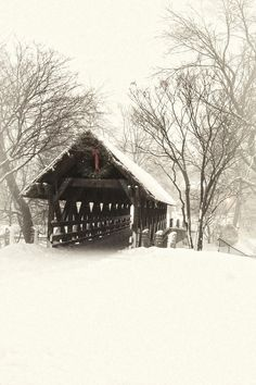 Waiting For The Sleigh Photograph by Andrew Soundarajan - Waiting For The Sleigh Fine Art Prints and Posters for Sale Old Bridges, Beautiful Places, Beautiful Pictures, Merry Christmas, Winter Scenery, Winter Art, Winter Snow, Winter Time, Snow Scenes