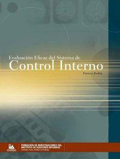 Evaluación eficaz del sistema de control interno / Patricia Berbia