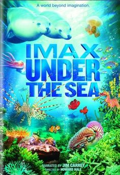 Imax's film Under the Sea is a film worth being excited about, particularly if you love nature documentaries.