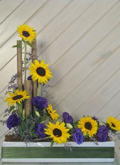 Amazing sunflower, just brighten your day:)