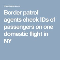 Border patrol agents check IDs of passengers on one domestic flight in NY